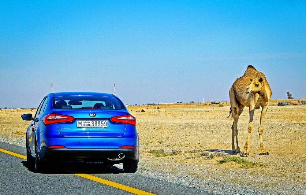 Kia Cerato 2014, United Arab Emirates