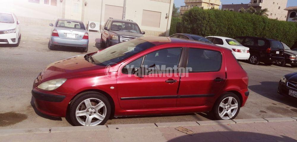 New Peugeot  307 2004