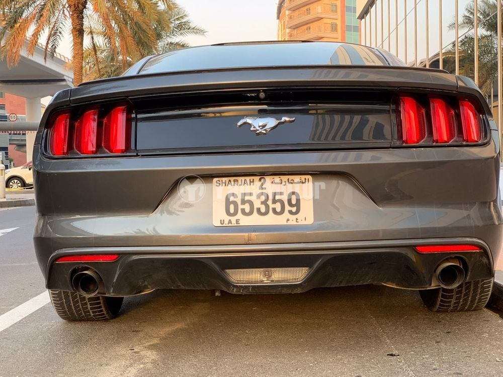 Used Ford Mustang Coupe 2017