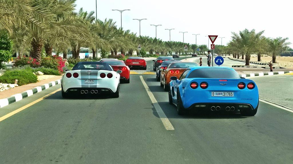 Mingling with Corvette UAE Club - 2