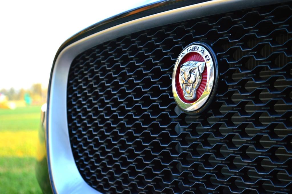 Jaguar F Pace 2017 Grille